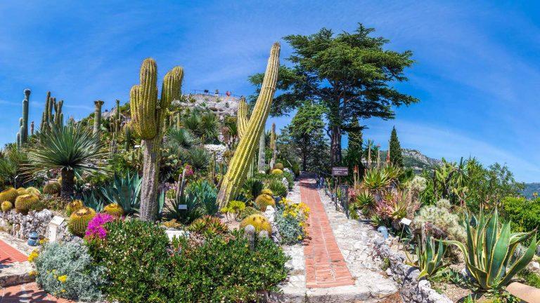 Le jardin exotique de la ville d'Eze ©BBO Studio